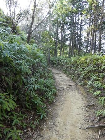 160325-熊野古道 小辺路 (18)
