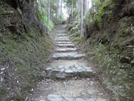 160325-熊野古道 小辺路 (22)