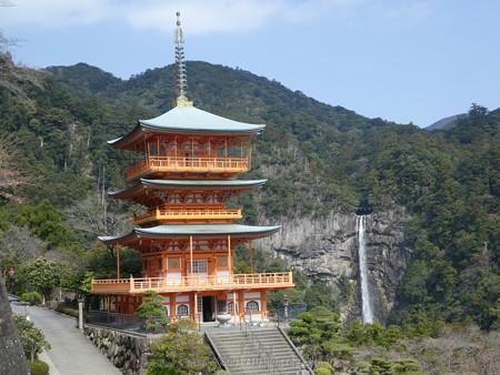 160324-三重塔 (2)