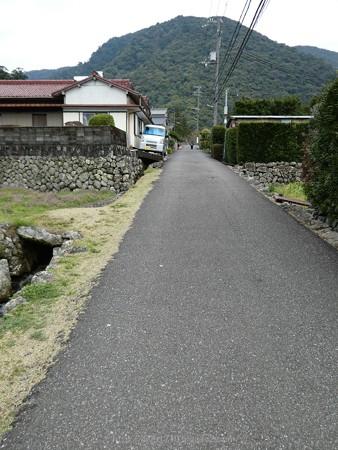 160324-熊野古道 大門坂 (13)