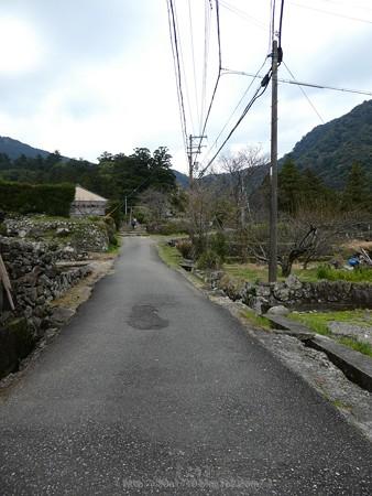 160324-熊野古道 大門坂 (16)