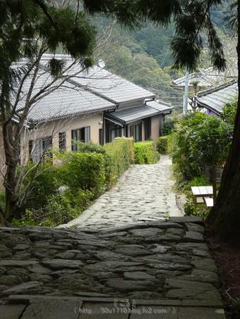 160324-熊野古道 大門坂 (34)