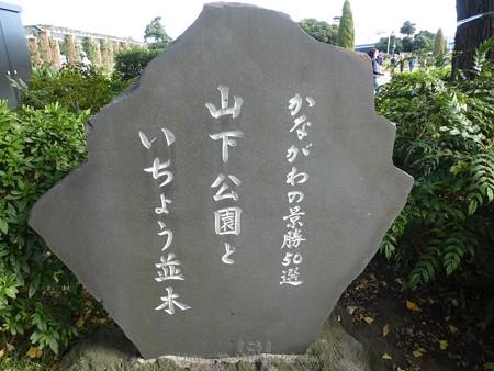 171112-山下公園通り (36)