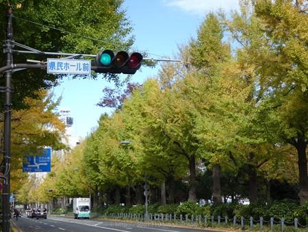 171112-山下公園通り (50)