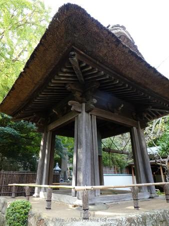 171113-報国寺 (14)
