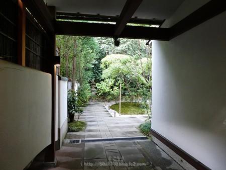 171113-報国寺 (16)