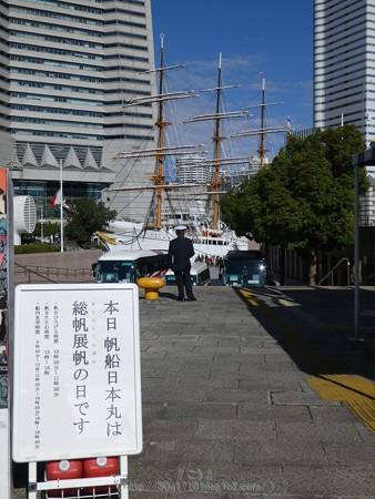 171112-日本丸 総帆展帆 (2)