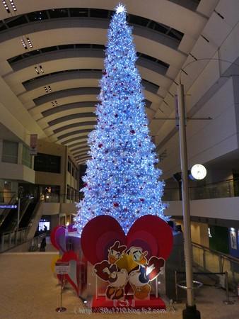 171129-クイーンズスクエア クリスマスツリー (25)