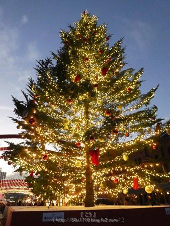 171129-赤レンガ クリスマスマーケット (68)