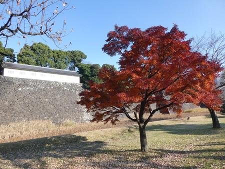 171207-皇居 (51)