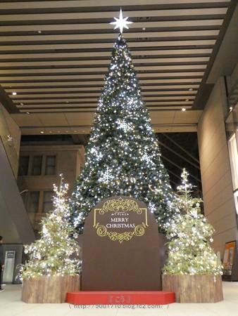 171207-クリスマスツリー MyPLAZA (7)