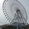 Photos: 100331-天保山公園 (36)