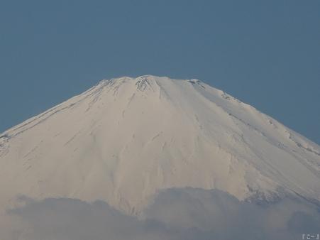 110305-松田山 河津桜 (121)