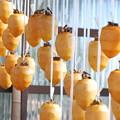 Photos: つるし柿今年も
