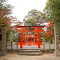 Photos: 山陰神社(やまかげじんじゃ)