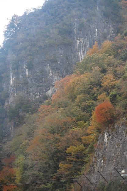 写真: 中国地方の山の紅葉
