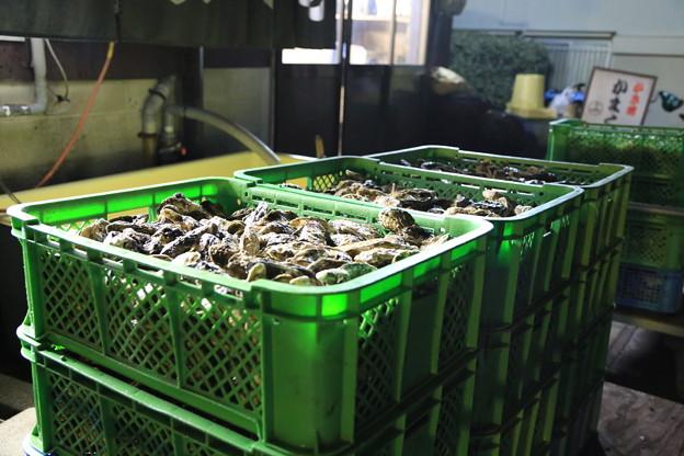 香川の牡蠣