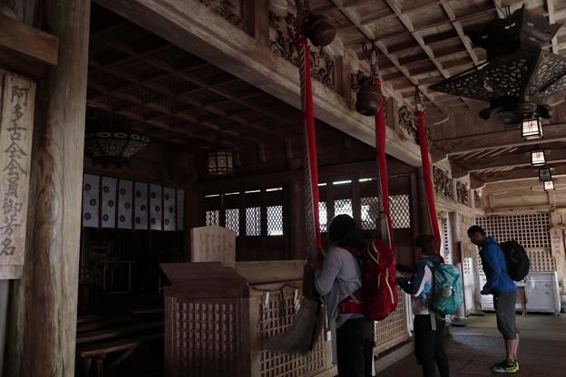 京都・愛宕山17