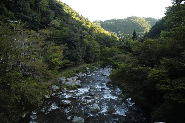 京都・愛宕山33