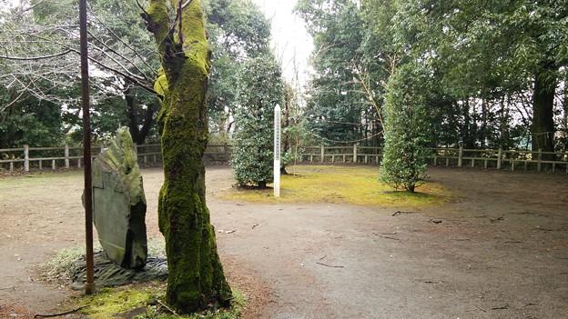 氷川女體神社岩船祭祭祀遺跡
