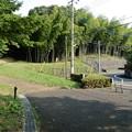 浄瑠璃緑地