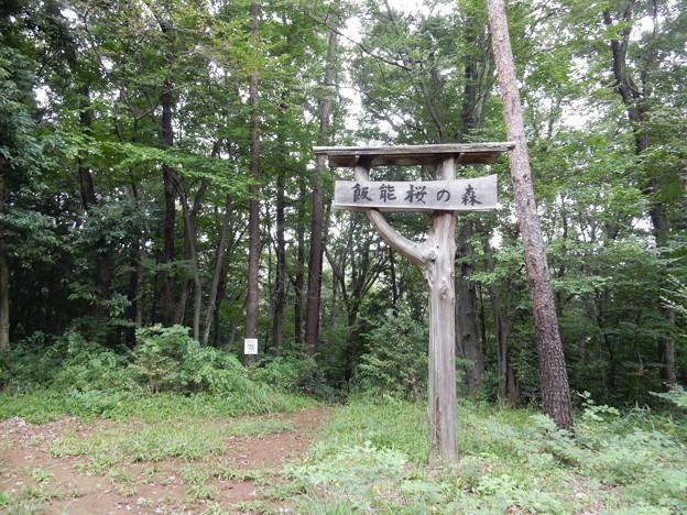 飯能桜の森