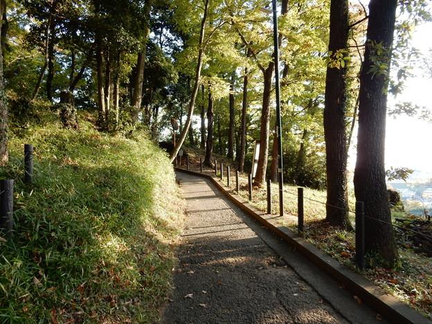 七尾丘陵散策コース(東)