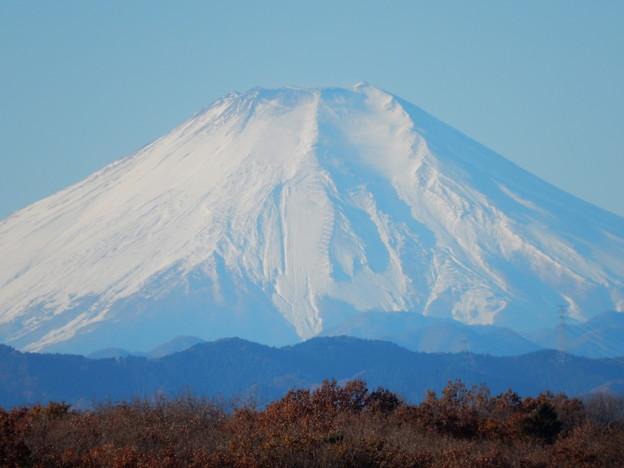 狭山富士富士山ズ~ム