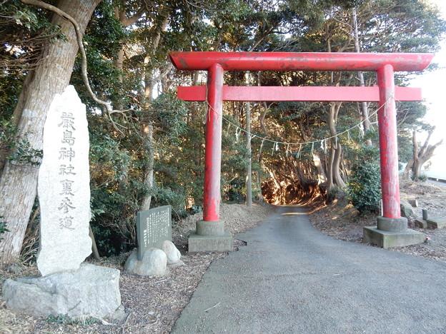 写真: 厳島神社裏参道