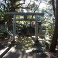 写真: 玉澤稲荷神社