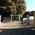 写真: 四方権現神社