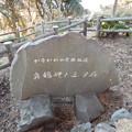 写真: 真鶴岬と三ツ石