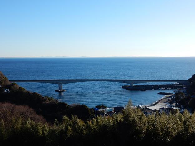 上から岩大橋