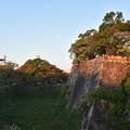 写真: 大阪城 桜門付近の内堀 (空堀) と月