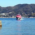 写真: 水中翼船