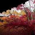 Photos: 京都東福寺・・・