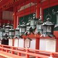 Photos: 春日大社灯籠