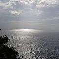 写真: 20110627_163033_raw_01