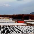 2014年歳の瀬 昭和村の畑風景
