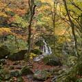 渓谷の紅葉(吐竜の滝)