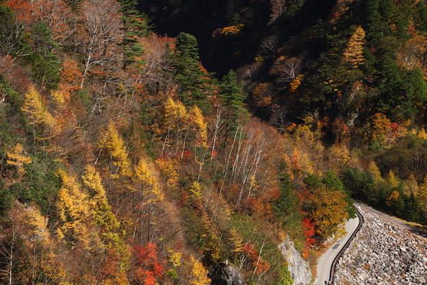 高瀬渓谷の紅葉3