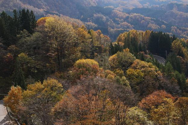 大望峠の秋の眺望2