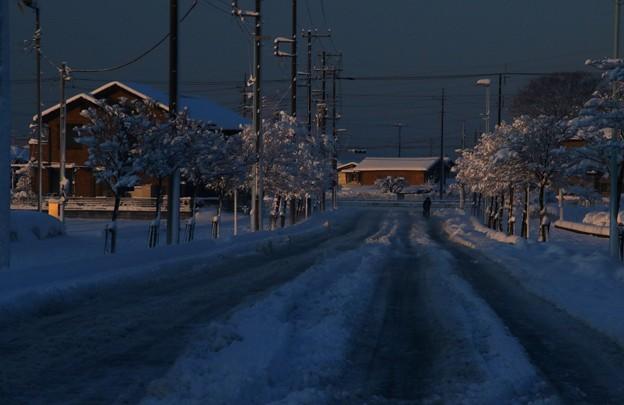 朝陽の当たる道路の積雪