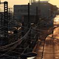 Photos: 鉄道と歩道と