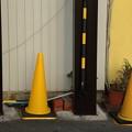 写真: 黄色の風景
