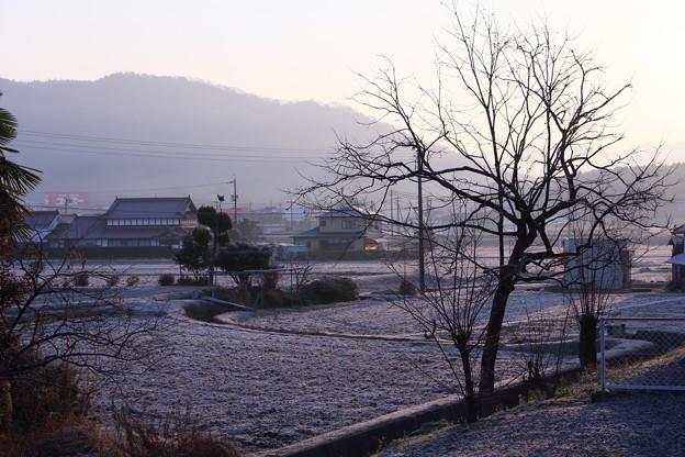写真: 風景