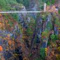 瀬戸合峡 渡らっしゃい吊橋