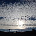 高積雲とうしろの太陽