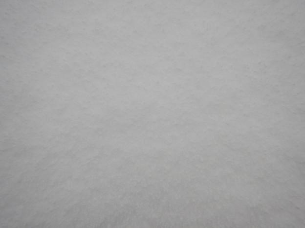 霰混じりの新雪面・壁紙用