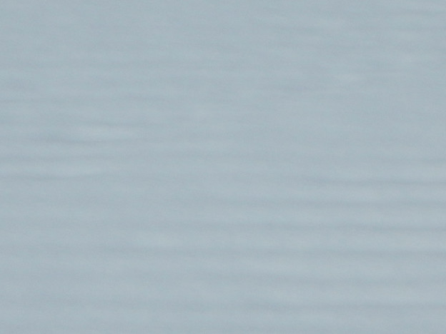 写真: 雪面の畝・壁紙用